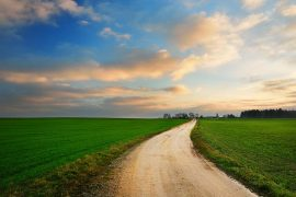 Abrir Caminhos Novos